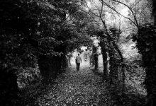 Wanderer (CC0)